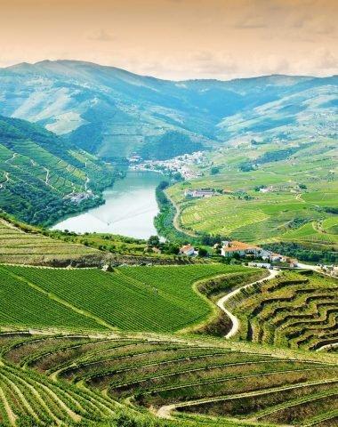 Portské víno – perla mezi víny nejen pro gurmány