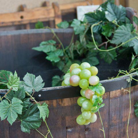 Výroba vína – 9 základních kroků