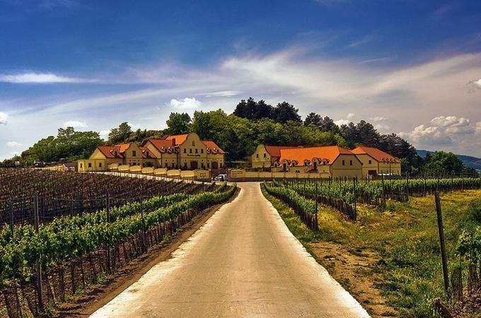 Letní otevřené sklepy Vinařství U Kapličky, Zaječí 2020