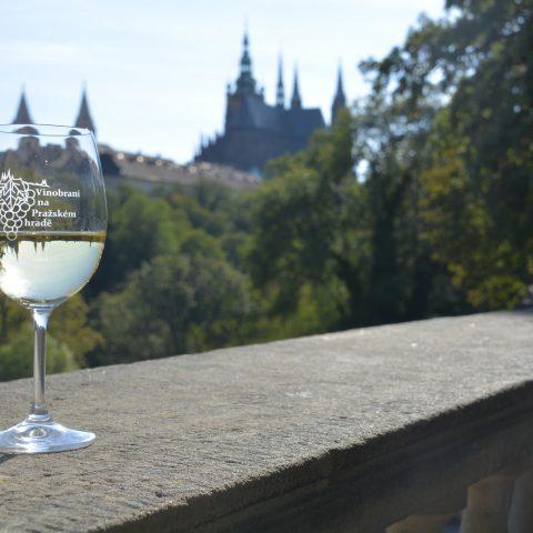 Vinobraní v Praze 2020