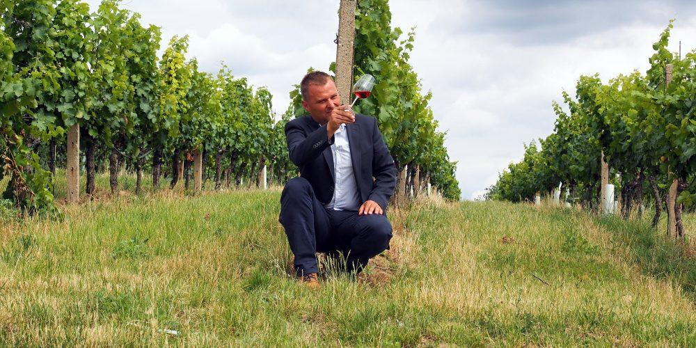 Rozhovor: Vinařství Vajbar