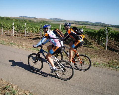 5 zajímavých cyklo tras, které pojí aktivní dovolenou s výborným vínem
