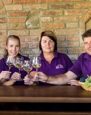 Rozhovor: Rodinné vinařství Ivičič