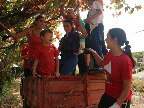 2. díl – Portugalsko, země vinařství zaslíbená