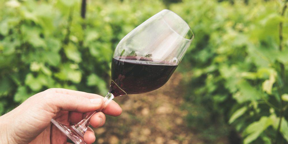 20 tipů jak vybrat kvalitní červené víno