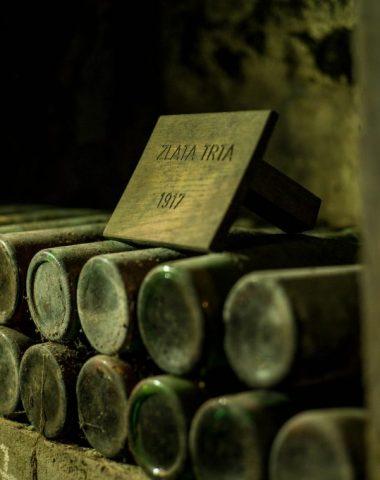 Archivní víno – zajímavosti, vhodnost vína pro archivaci, optimální skladování a mnoho dalšího