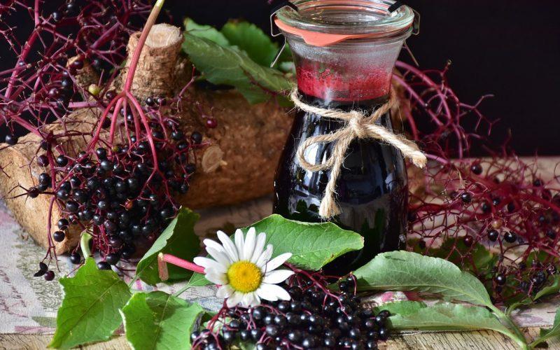 Bezové víno: Blahodárný nápoj z uctívané rostliny