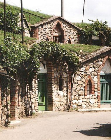 Objevte kouzlo jižní Moravy: Obec Vrbice skrývá unikátní vinné sklepy