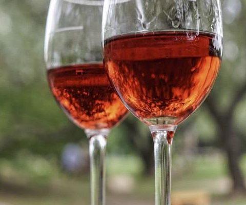 Švestkové víno: nápoj z naší zahrádky
