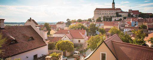 Mikulovská podoblast – vinice zalité sluncem, zámky, malebné vesničky